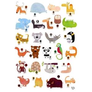 Affiche 40x50 Abécédaire enchanté des animaux