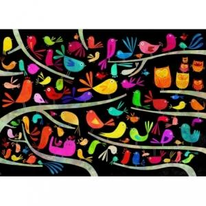 Affiche 50x70 Les oiseaux polonais