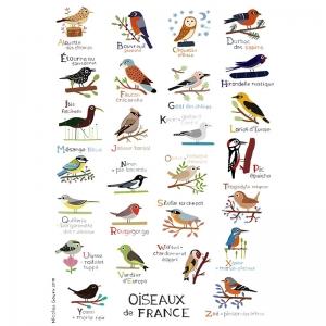 Affichette Abécédaire des oiseaux de France