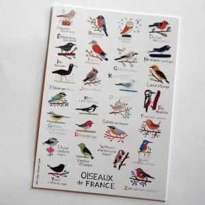 Carte postale Oiseaux de France