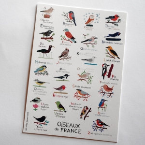 Postal card Birds of France