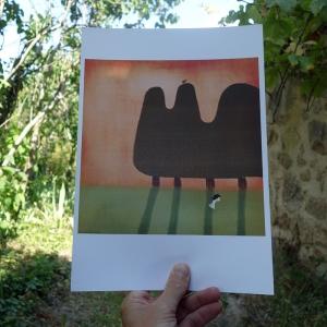 Affiche Sauter par-dessus les ombres